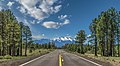 """A Road to Look Forward To"" state road Flagstaff, Arizona.jpg"