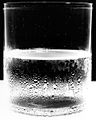 """Water Glass 2, 2004 (Variant)"" by Amanda Means.jpg"