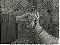 'giotto', Apparizione a Gregorio IX 04.jpg