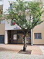 École maternelle 5 rue Simone Weil.jpg