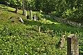 Židovský hřbitov, Boskovice, okres Blansko (08).jpg