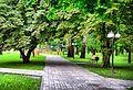 Аллея в Бурынском парке.jpg