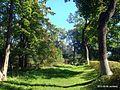 Аллея в парке - panoramio (3).jpg