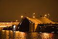 Биржевой мост ночью.jpg