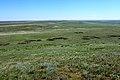 Вид с Пьяной Горы, с отметки 282 м в южном направлении - panoramio.jpg