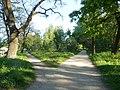 Графський парк (парк Ніжинського педінституту), Ніжинський район, м. Ніжин 74-104-5004 03.JPG