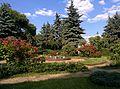 Кремлевский сад.jpg