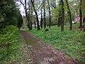 Національний еколого-натуралістичний центр - panoramio (1).jpg