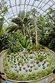 Полярно-альпийский ботанический сад оражерея 1.jpg
