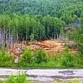 Самоизлив шахтных вод шахты Калинина, Губаха - panoramio (11).jpg