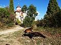 Скит Светог Андреја - Света Гора - panoramio (1).jpg