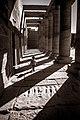 معبد فيله - أسوان.jpg