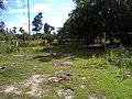 สวนสุนนท์กุล,บ้านสร้างโพน - panoramio.jpg
