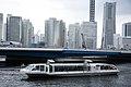 シーバス, Seabass, Yokohama cruising - panoramio.jpg