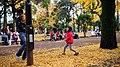 光が丘公園 Tokyo, Japan Sigma 35mm Canon 6D (31867123041).jpg