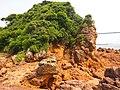 赤崎の鼻の地質モニュメント Akazaki Geology Monument - panoramio.jpg