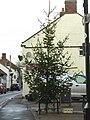 -2020-12-14 Town Christmas tree, Stalham.JPG