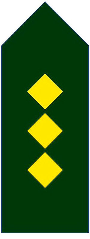 Captain (armed forces)