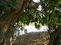 07834jfPampanga River banks Candelaria Welcome Calumpit Bulacan Roadsfvf 14.JPG