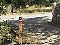 08-06-2017 Way-marker post, Via Algarviana long distance hiking trail, Alfarrobeiras (3).JPG