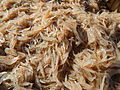 09877jfFields Wawa Shrimps Fish Beaches Orion Bataanfvf 16.JPG