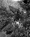 1890s G Washington Wilson Alameda Gardens.jpg