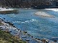2007Landschaftsschutzgebiet Isarauen08.jpg