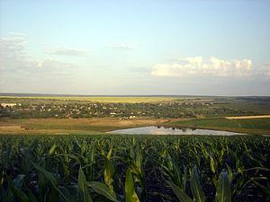 Cantemir District - Visneuca (population 1,603)