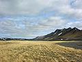 2008-05-23 09 59 22 Iceland-Víðirhóll.jpg