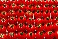 2012 08 05 030 Tomaten.jpg