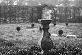 2013-04-20-06-19-42-ChateauBoisBriand.jpg