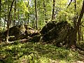 2013-05-06 15 14 25 Closer view of glacial erratics the Ghost Lake Trail in Jenny Jump State Forest.jpg