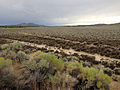 2014-07-31 15 42 06 Mud and other remnant debris from flash flooding along U.S. Route 93 in southern Elko County, Nevada.JPG