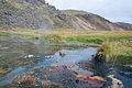 2014-09-16 12-01-01 Iceland Suðurland Skogar Landmannalaugar.jpg