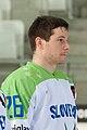 20150207 1426 Ice Hockey ITA SLO 8657.jpg