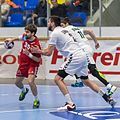 20170112 Handball AUT CZE 6010.jpg
