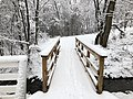 2018-03-21 12 54 57 View along a snow-covered walking path as it crosses a bridge over a tributary of the Cain Branch of Cub Run in the Franklin Farm section of Oak Hill, Fairfax County, Virginia.jpg