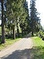 2019-05-22 Oulun hautausmaa 15.jpg