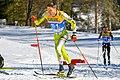 20190227 FIS NWSC Seefeld Men CC 15km Petrica Hogiu 850 4256.jpg