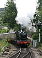 3803 South Devon Railway (4).jpg