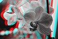 3D CMS CC-BY (15550074797).jpg