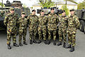 45 Inf Gp UNIFIL Ministerial Review Curragh Camp 008 (14145460695).jpg