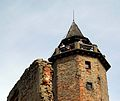 4833viki Zagórze Śląskie - zamek Grodno. Foto Barbara Maliszewska.jpg