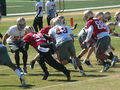 49ers training camp 2010-08-11 2.JPG