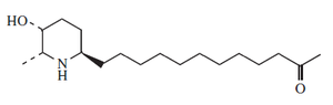 6-Isocassine.png