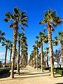 780 Passeig marítim del Cabanyal (València).jpg