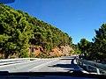 A397 Ronda - Marbella (48794661062).jpg