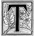 AFR V3 D410 Letter T.jpg