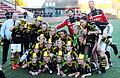 AIK Fotboll Dam2013.jpg