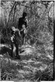 ASC Leiden - Coutinho Collection - 13 08 - Campada college on the northern frontline, Guinea-Bissau - Digging trenches - 1973.tif